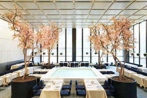 Branch, Interior design, Floor, Room, Architecture, Ceiling, Table, Twig, Furniture, Interior design,