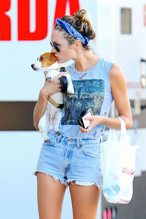 Dog breed, jean short, Denim, Sleeveless shirt, Vertebrate, Carnivore, Dog, Shorts, Thigh, Headpiece,