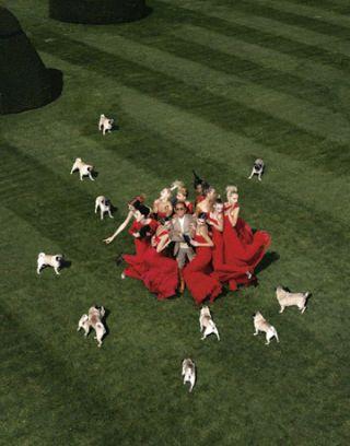 valentino-dogs-FA-0607
