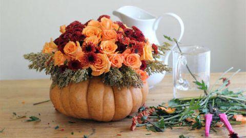 Petal, Flower, Serveware, Calabaza, Orange, Vegan nutrition, Bouquet, Drinkware, Squash, Peach,
