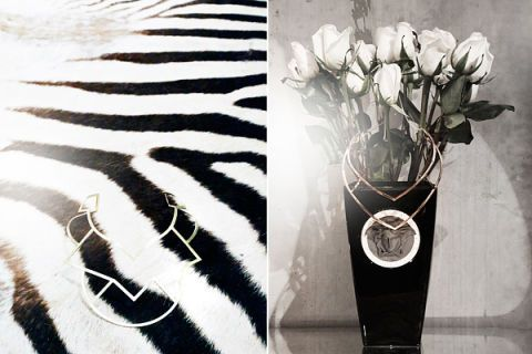 Zebra, Petal, Flowering plant, Monochrome photography, Still life photography, Artifact, Vase, Cut flowers, Black-and-white, Bouquet,