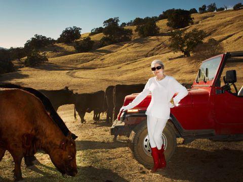 Natural environment, Bovine, Landscape, Working animal, Fender, Sunglasses, Rural area, Travel, Terrestrial animal, Livestock,