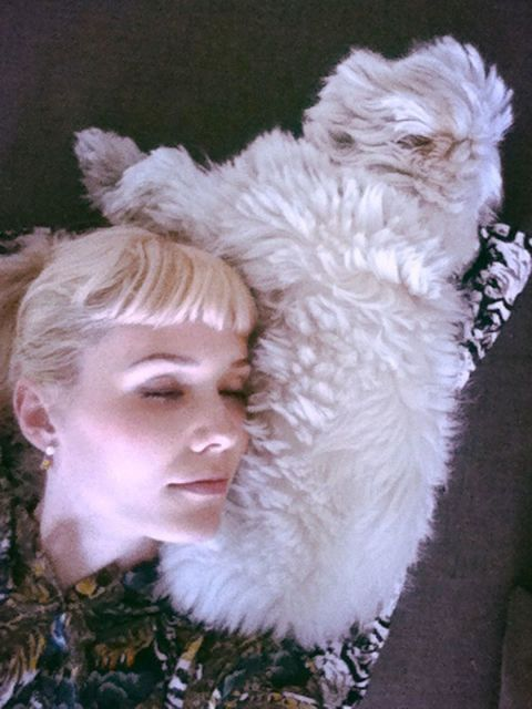 Carnivore, Fur, Blond, Natural material, Earrings, Felidae, Stuffed toy, Fur clothing, Cat, Small to medium-sized cats,