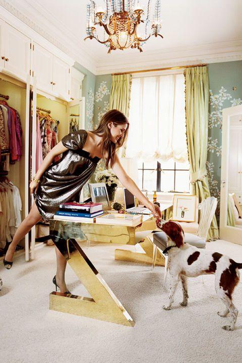 Lighting, Dog breed, Interior design, Dog, Carnivore, Room, Chandelier, Light fixture, Interior design, Ceiling,