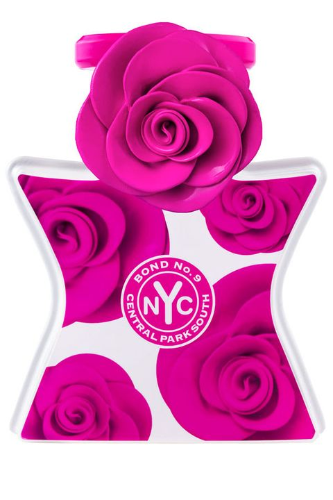 Petal, Flower, Magenta, Purple, Red, Pink, Violet, Cut flowers, Flowering plant, Rose family,
