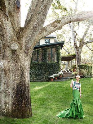 Grass, Branch, Leaf, Trunk, House, Lawn, Spring, Garden, Gown, Park,