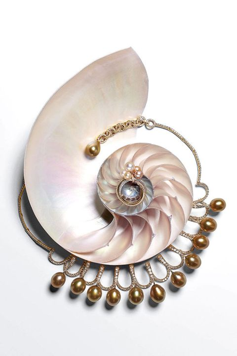 Natural material, Fashion accessory, Spiral, Metal, Beige, Tan, Body jewelry, Pearl, Silver, Circle,
