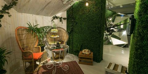 Interior design, Ceiling, Interior design, Flowerpot, Houseplant, Box, Home accessories, Vase,