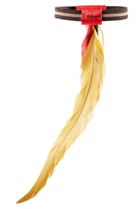 Yellow, Line, Amber, Orange, Tan, Beige, Feather, Ribbon, Natural material, Hair accessory,