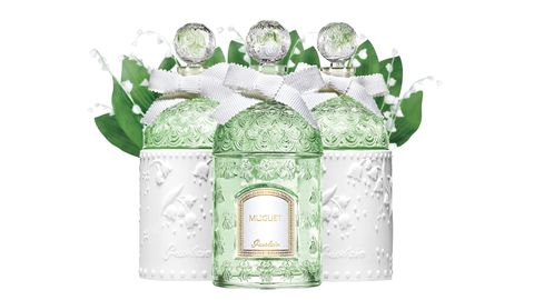Liquid, Glass bottle, Perfume, Bottle, Present, Party supply, Label, Wedding favors, Party favor, Ribbon,
