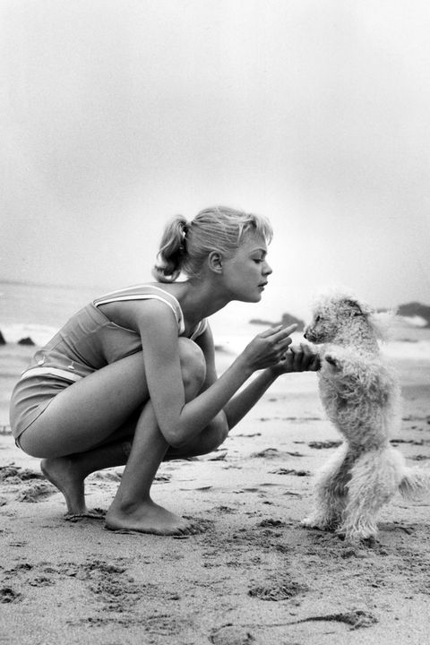 Elbow, Toe, Barefoot, Foot, Sand, Rodent, Ankle, Paw, Dog breed, Curious,