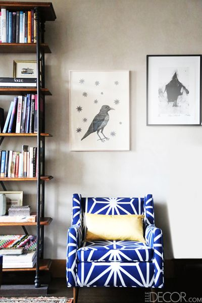 Blue, Shelf, Room, Wood, Bookcase, Shelving, Interior design, Wall, Furniture, Bird,