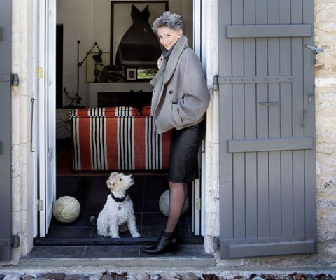 Human, Dog breed, Vertebrate, Mammal, Dog, Jacket, Carnivore, Toy dog, Street fashion, Door,