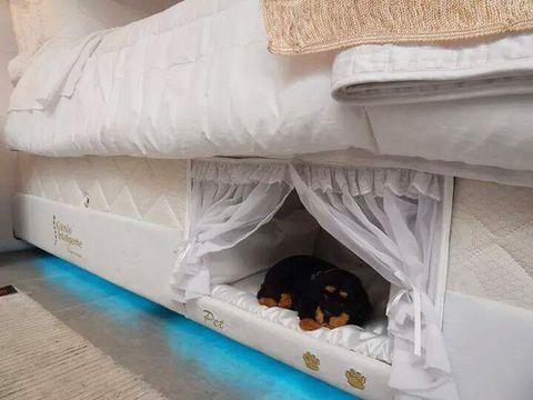 """<p>Hij ging een tijdje geleden al viral, maar we krijgen er geen genoeg van: dit ingebouwde bed voor je trouwe viervoeten (kat of konijn mag ook). (<a href=""""http://www.seucolchaointeligente.com.br/"""" target=""""_blank"""">meer info vind je hier</a>)</p>"""