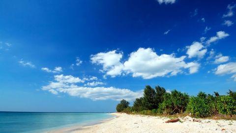 <p>Indonesië is behept met duizenden prachtstranden, waaronder Mushroom Bay Beach op eiland Nusa Lembongan, niet ver van de kust van Bali. Maar een verblijf bij het afgelegen eco-retraite Jeeva Beloam Beach Camp, aan de oevers van een nog onbedorven Lombok, is goud. Even helemaal geen bereik. </p>