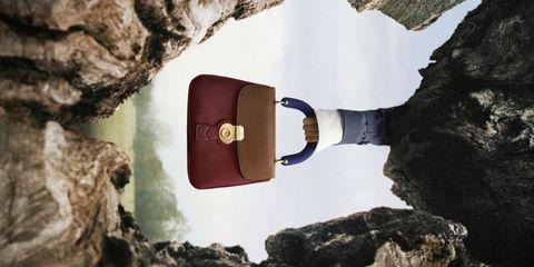 Wood, Rock, Tree, Geology, Formation, Fashion accessory, Metal,