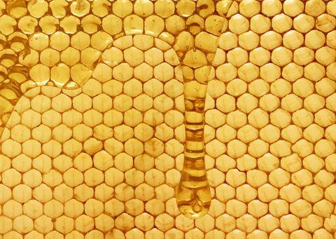 "<p>人們自古以來就發現食用蜂蜜,對健康有很大的幫助。埃及豔后更是將蜂蜜與牛奶混合,作為保濕面膜使用。隨著科技進步,除了廣為人知的蜂蜜,能加強肌膚保濕之外,科學家再發現蜂巢中的美容秘密,蜜蜂用於消毒並修補蜂巢的蜂膠,具有天然淨化及修復功能;而女王皇蜂的唯一食物:蜂王乳則有緊緻肌膚功效。<span class=""redactor-invisible-space"" data-verified=""redactor"" data-redactor-tag=""span"" data-redactor-class=""redactor-invisible-space""></span></p>"