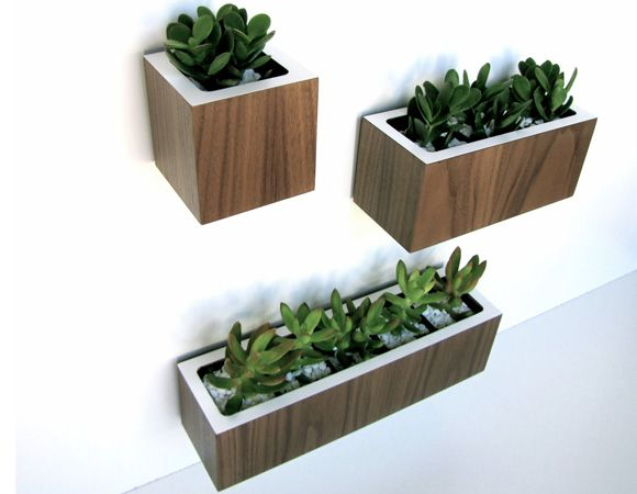 plant-holders.jpg