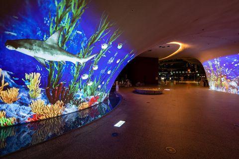 台中歌劇院曲牆變身投影幕,「光之曲幕」打造超真實沈浸式感官享受!