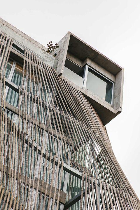 宜蘭全新旅宿「了了礁溪」美到想私藏!樹洞為靈感打造、房間能眺山望海⋯5大必住亮點好心動