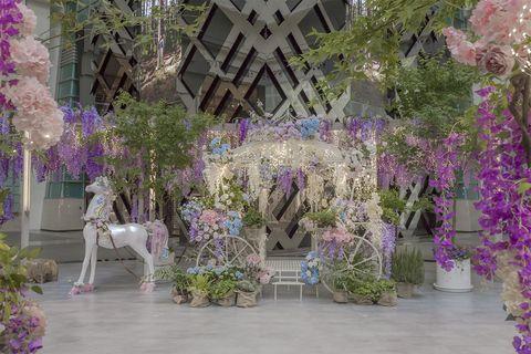 台北101紫色秘境