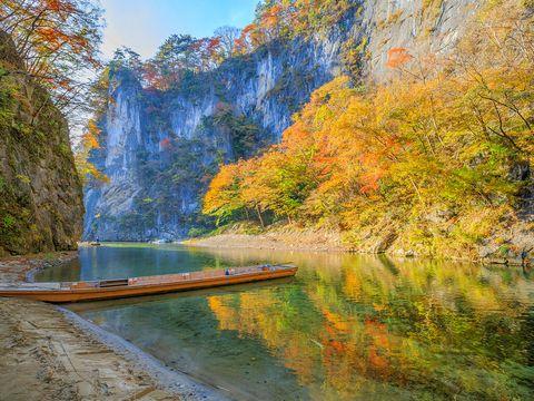 Nature, Natural landscape, Water, Reflection, Tree, Leaf, River, Autumn, Sky, Wilderness,