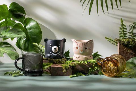 星巴克推出石虎、台灣黑熊保育杯、環保吸管
