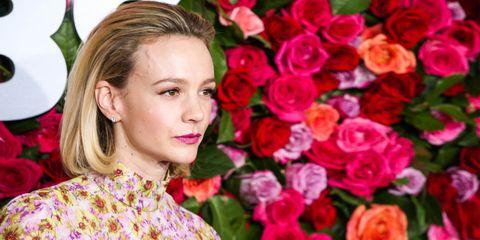 Rose, Pink, Flower, Garden roses, Beauty, Rose family, Petal, Plant, Lip, Floral design,