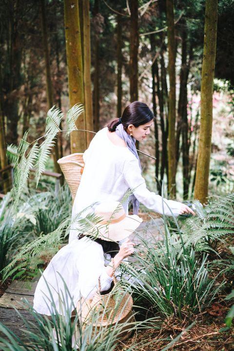 想與大自然有更親密的接觸?那就跟專業花藝師到薰衣草森林裡漫步,享受愜意的自然美感時光吧!