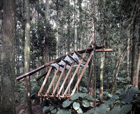 森林木十人東眼山森林裝置藝術