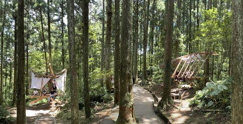 如果挑選一座山,做為你的初體驗,那麼請到桃園東眼山。因為這裡有著雲霧繚繞、仙氣十足的柳杉林相,而且隱藏其中的「森林木十人」的夢想作品「浮森」、「脊森」、「繫森」、「懸森」,太美了,它讓人們親近山的觀點,從隨著山的步道,改變為可以從地面仰望林相、甚或躺在樹林半空中,讓整座山的綠滲入你的靈魂深處,是非常獨特的體驗。
