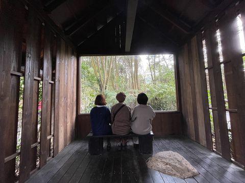 薰衣草森林無牆的「森林美術館」展現動植物與生態環境的多元樣貌,一年四季繪出萬變的風景。只能說大自然就是世界上最美的藝術品~