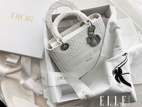 Lady Dior 刺繡帆布提包