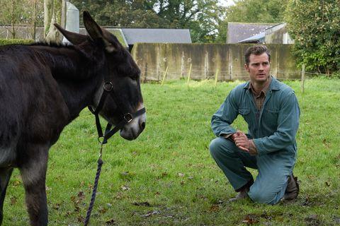 《真愛鄰距離》預告「古怪」釋出!「格雷總裁」傑米道南化身「務農男孩」戀上艾蜜莉布朗