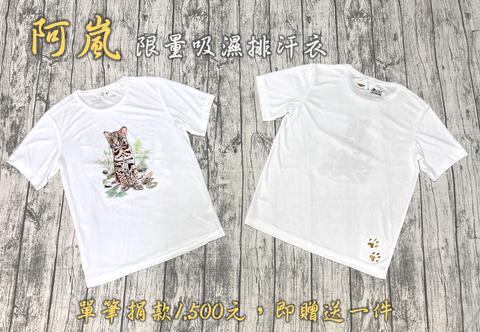 石虎,台灣石虎保育協會,動物保育