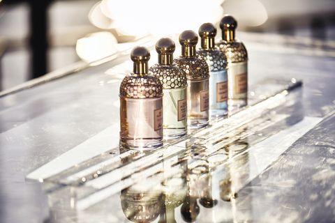 嬌蘭,花草水語淡香水,玫瑰,椰影白沙淡香水,漫天粉櫻淡香水,暖心甜薑淡香水,香氛,法國巴黎,beauty