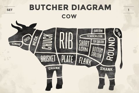 Bovine, Snout, Font, Livestock, Illustration, Cow-goat family, Ox, Dairy cow, Beef, Graphics,