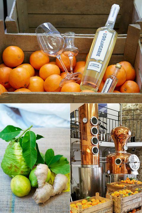 Clementine, Rangpur, Mandarin orange, Tangerine, Citrus, Fruit, Food, Orange, Valencia orange, Meyer lemon,
