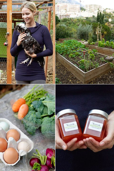 Local food, Vegetable, Soil, Natural foods, Superfood, Garden, Food, Leaf vegetable, Plant, Radish,