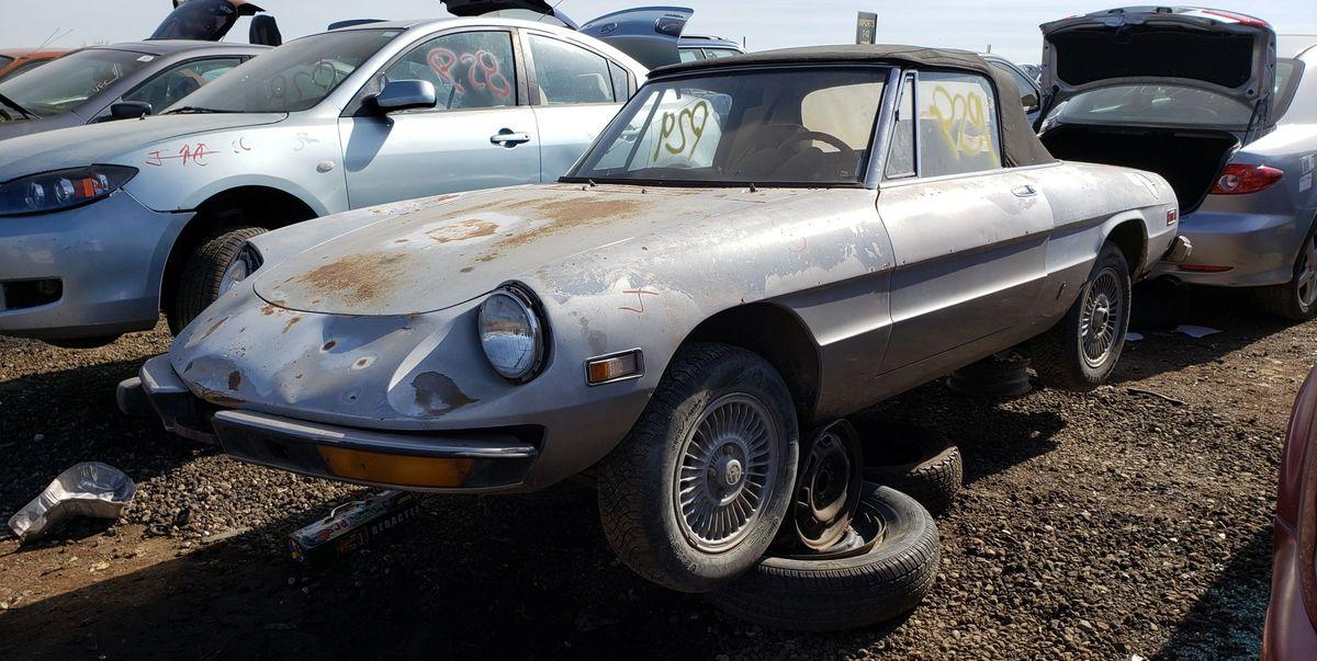 Junkyard Treasure: 1974 Alfa Romeo Spider