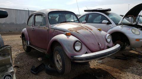 1976 volkswagen beetle in colorado junkyard