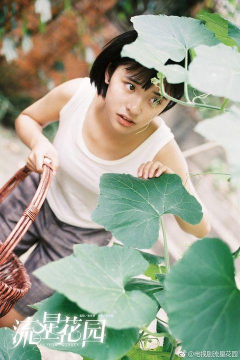 沈月, 新流星花園, 杉菜