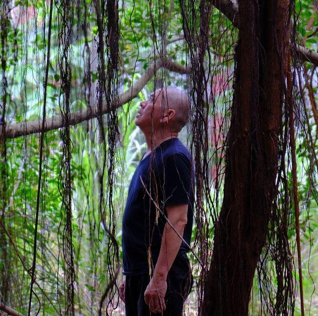 蔡明亮新作品《月亮樹》登北影首映!透過鏡頭凝視「月亮歌手」李珮菁、「影界長青樹」常楓退休日常