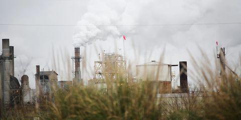 Smoke, Atmospheric phenomenon, Atmosphere, Grass family, Pollution, Tree, Plant, Industry, Chimney, Factory,