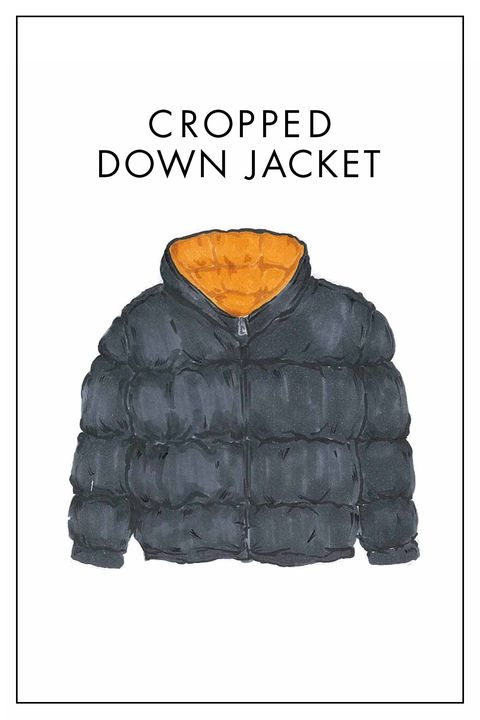 Clothing, Jacket, Outerwear, Hood, Sweatshirt, Sleeve, Top,