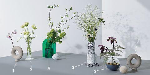 Flowerpot, Ikebana, Vase, Plant, Flower, Houseplant, Branch, Cut flowers, Twig, Floral design,