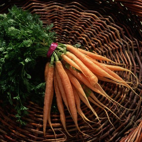 Carrot, Vegetable, Root vegetable, Food, Local food, Radish, Plant, Daikon, wild carrot, Baby carrot,
