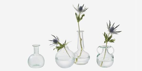 Glass, Serveware, Artifact, Flowering plant, Botany, Vase, Still life photography, Creative arts, Pottery, Plant stem,