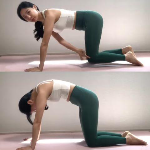 每天10分鐘就能快速瘦!超簡單『棒式變化運動』,14天減肥消小腹很有感!