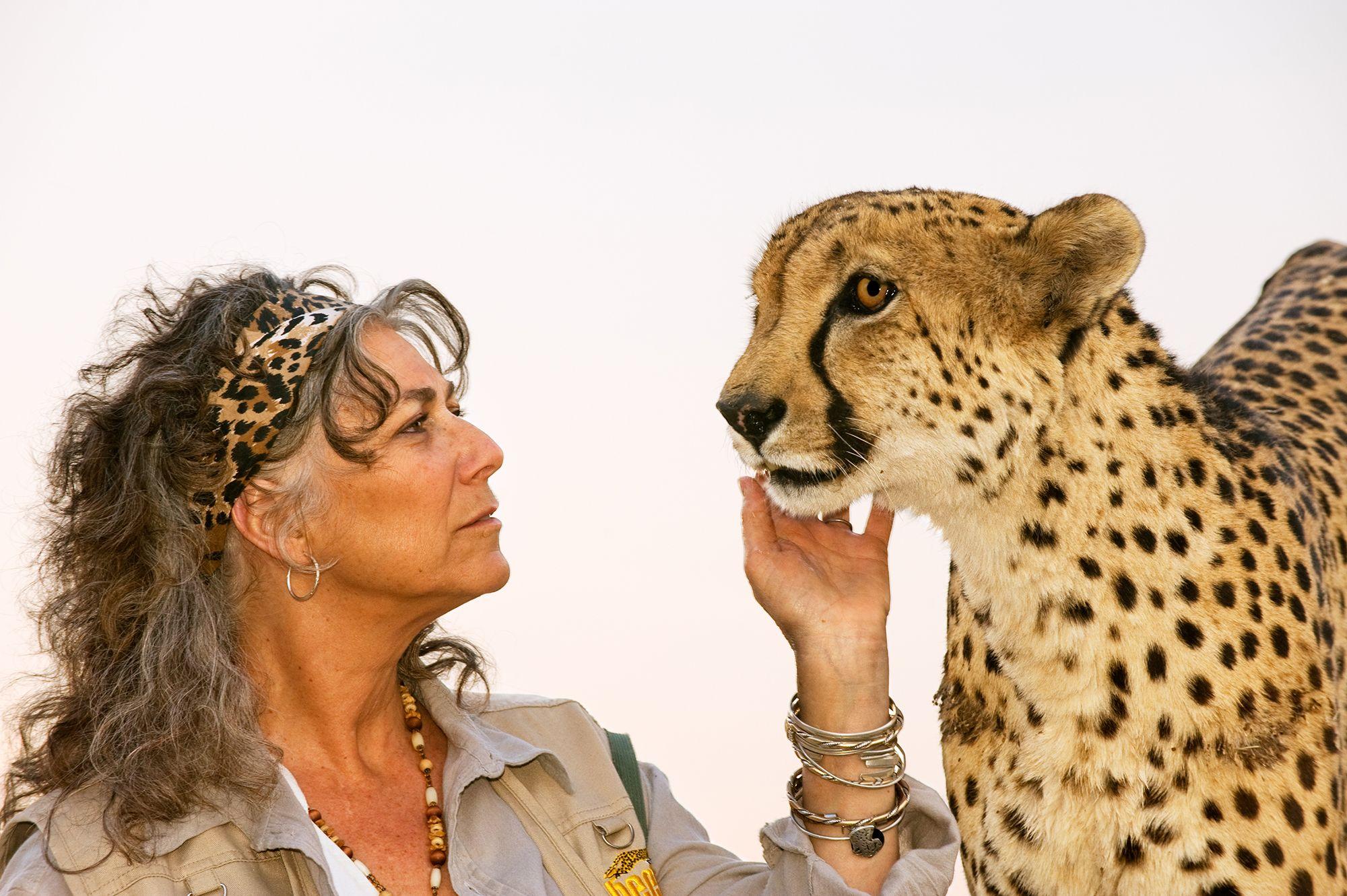 La sopravvivenza dei ghepardi è una corsa contro il tempo: parola di Laurie Marker